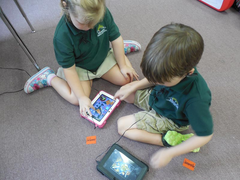 We are now using Kindles in our Elementary Program